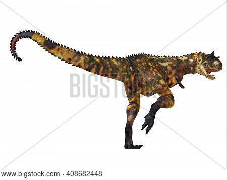 Carnotaurus Dinosaur Tail 3d Illustration - Carnotaurus Was A Carnivorous Theropod Dinosaur That Liv