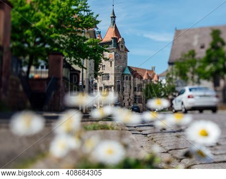 Daisy Flowers On The Trottoir With Tall Beautiful Musee Historique De Haguenau Building In Backgroun