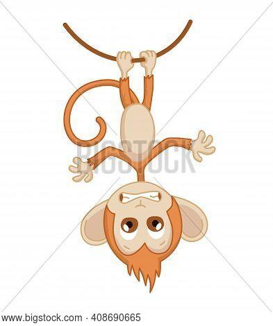 Cute Funny Monkey Colorful Cartoon Illustration. Vector Little Chimpanzee. Wildlife Character