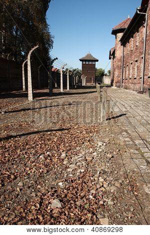 View To Watch Tower, Auschwitz