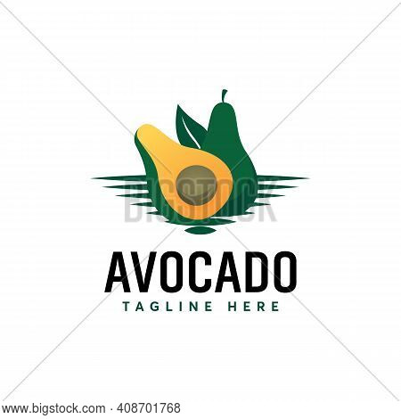 Fresh Avocado Logo Designs Vector, Illustration Of Avocado Fruit Template