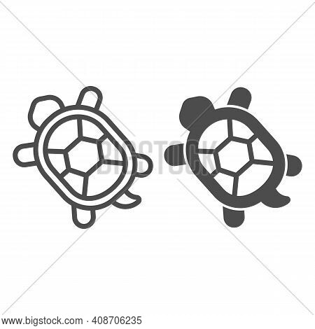 Turtle With Hard Shell Line And Solid Icon, Domestic Animals Concept, Tortoise Sign On White Backgro