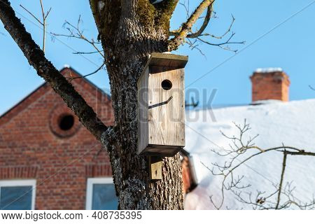 Wooden Bird House In A Tree In The City.