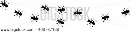 Ant Icon Isolated On White Background , Touching, Ugliness