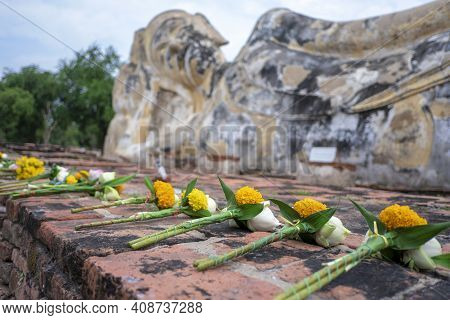 Flowers For Paying Respect To Buddha Images