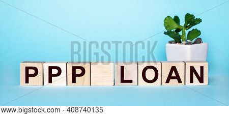 The Word Ppp Loan Is Written On Wooden Cubes Near A Flower In A Pot On A Light Blue Background