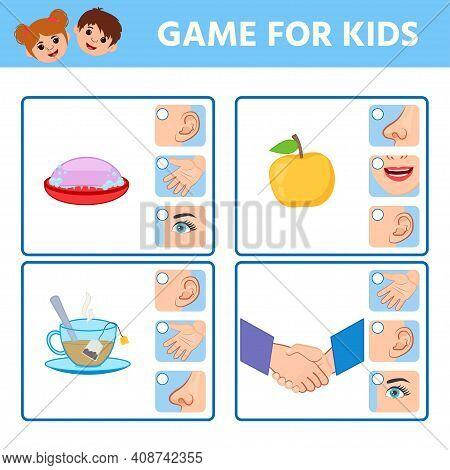 Game For Children To Develop Logic. Five Senses Illustrations. Sight, Hear, Smell, Taste, Touch. Mat