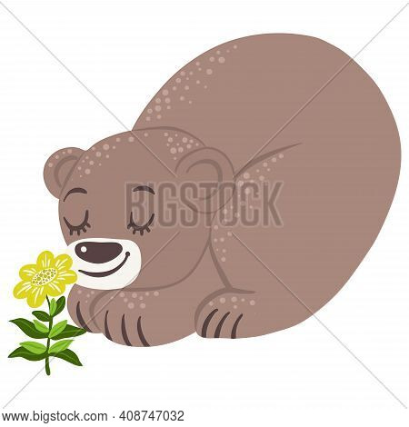Baby Bear Sniffing The First Spring Flower, Vector Illustration
