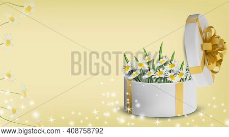 Floral Collection Chamomile In The Gift Box. Spring Flower. Love Concept, Mothers Day, . Illustratio