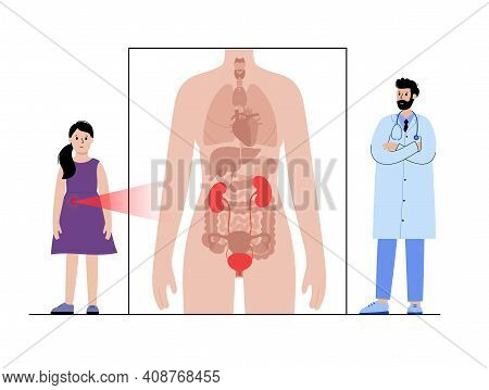 Pain Or Inflammation In Kidney. Mellitus Diabetes. Female Child Anatomy Poster. Ache In Female Human