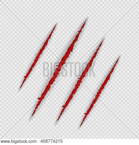 Claw Scratches Isolated On Transparent Background. Realistic Scary Danger Claw Marks, Symbol Of Mons