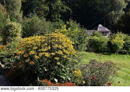 Blair Atholl, Great Britain - September 11, 2014: This Is A Flowerbed With Rudbeckia In The Park At