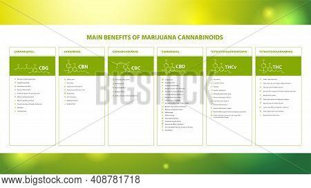 Main Benefits Of Marijuana Cannabinoids, Information Poster With Benefits Of Marijuana Cannabinoids