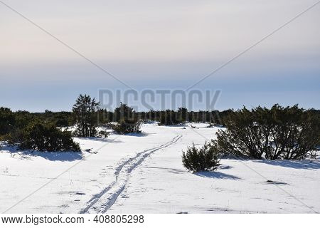 Ski Tracks In The World Hertage Landscape Stora Alvaret In Sweden