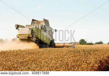 Rotary Straw Walker Cut And Threshes Ripe Wheat Grain. Combine Harvesters With Grain Header, Wide Ch