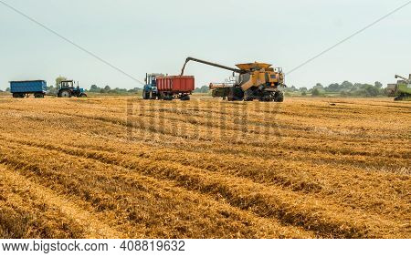 Unloading Grains Into Truck By Unloading Auger. Combine Harvesters Cuts And Threshes Ripe Wheat Grai