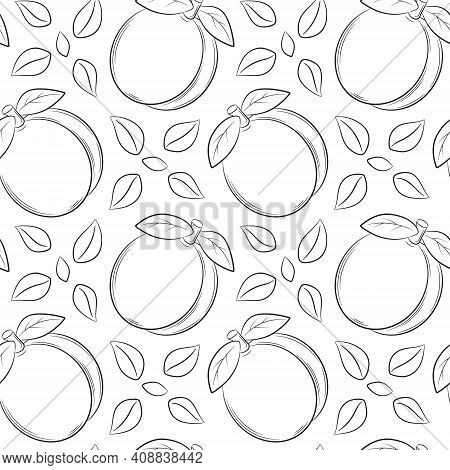 Seamless Pattern With Apricots, Peaches And Leaves. Black And White Hand-drawn Linear Elements Are I