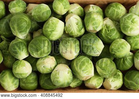 The Heads Of Brussels Sprouts Are Randomly Placed In A Cardboard Box. Closeup. View From Above