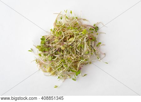 Mix Of Sprouts On A White Background