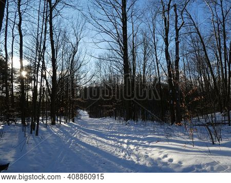 Landscape At Sunset In The Winter Forest