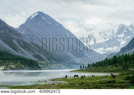 Horses And Tourist Camp Near Beautiful Mountain Lake In Mist On Background Of Great Glaciers. Awesom