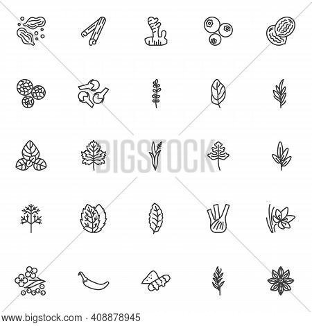 And Herbs Line Icons Set. Linear Style Symbols Collection, Outline Signs Pack. Vector Graphics. Set