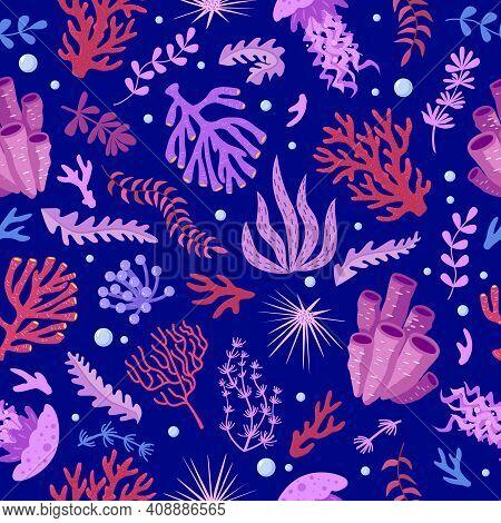 Seamless Pattern With Marine Fauna - Corals, Jellyfish, Sea Anemones, Seaweed, Sea Urchin, Bubbles