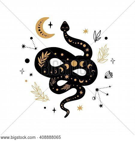 Mystic Animal, Moon Floral Serpent, Celestial Snake, Mystical Moon, Stars Isolated. Black Gold Color