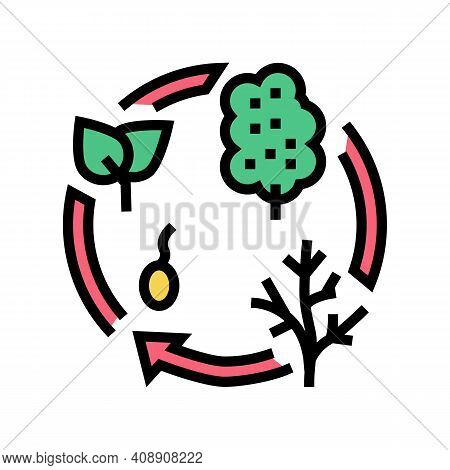 Life Cycle Color Icon Vector. Life Cycle Sign. Isolated Symbol Illustration