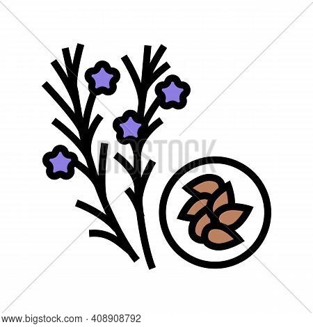 Flax Groat Color Icon Vector. Flax Groat Sign. Isolated Symbol Illustration