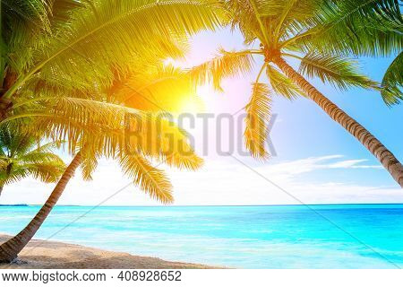 Coconut Palm Trees On White Sandy Beach At Sunset In Punta Cana, Dominican Republic. Vacation Holida