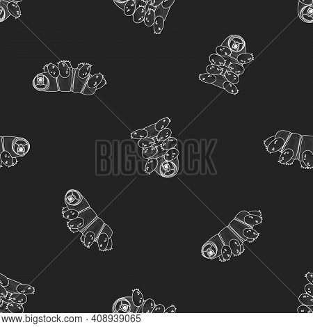 Vector Gray White Cute Tardigrade, Water Bears Or Moss Piglets Repeat Seamless Pattern. Chalk On Bla