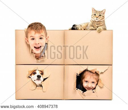 Funny Happy Kids And Pets Looking Out Of A Torn Hole In A Box Isolated On White Background