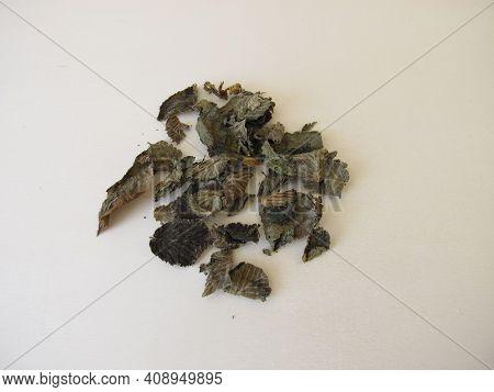 Fermented And Dried Hazelnut Leaves For Hazelnut Leaf Tea