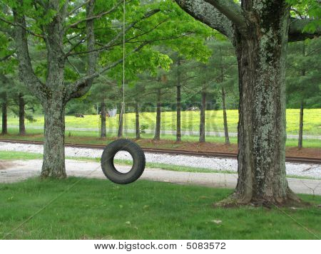 Tire Swing In Country