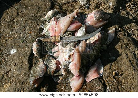 Filleted Fish At The African Fish Market