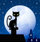 Black cat on chimney with moon town and starry night in the background poster