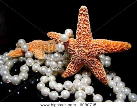 Starfish with Pearls On Black