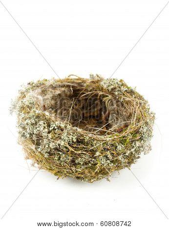 Real Empty Bird Nest On White