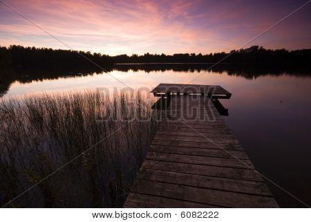 Evening Sun At Lake
