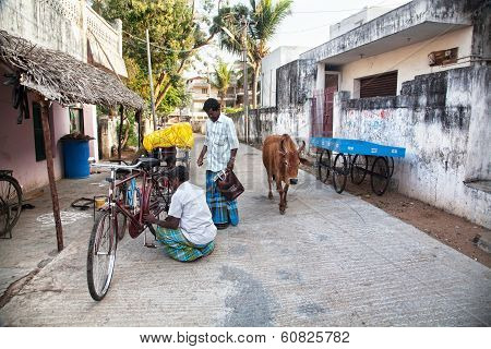 Indian Men With Bicycle