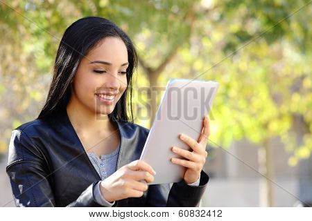 Happy Woman Reading A Tablet Reader In A Park