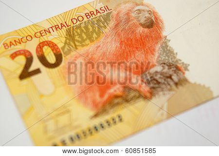 Twenty Reais From Brazil With Orangatang