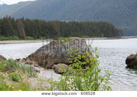 Wild Alaska Beach
