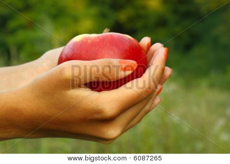 Apple in woman's hands