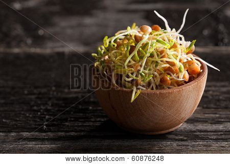 Brown Lentils Sprouts In A Wooden Bowl