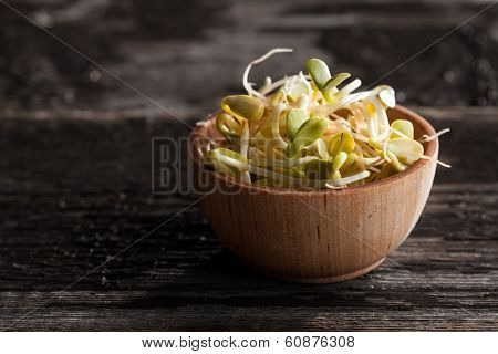 Sunflowers Sprouts In A Wooden Bowl