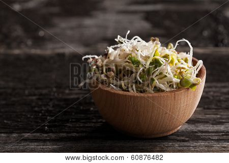 Radish Sprouts In A Wooden Bowl