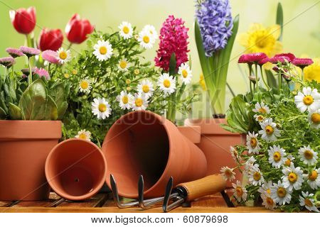 Outdoor gardening tools and flowers