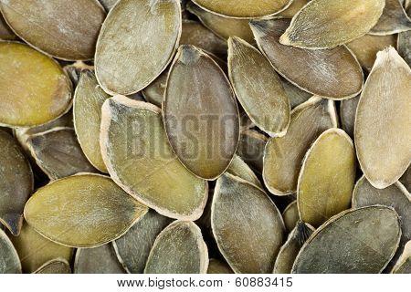 Raw  Shelled Pumpkin  Seeds